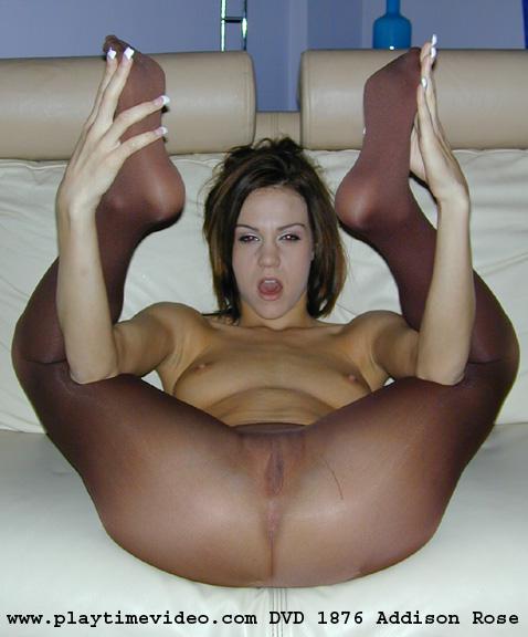 rose pantyhose Addison