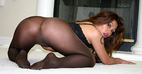 charmane star pantyhose
